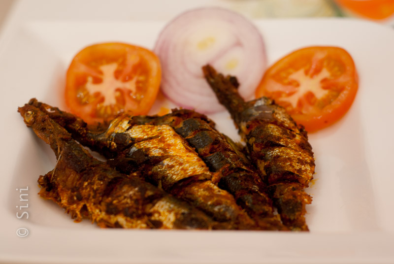 Sardine Fry