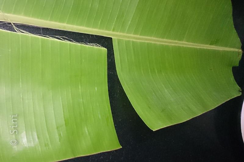 Banana Leaf / Vazhaila